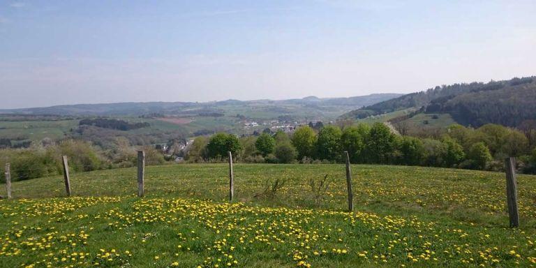 Ausblick vom Hasenberg