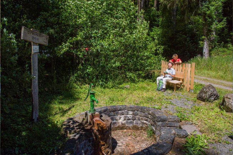 Demerather Drees Demerather Drees © Natur- und Geopark Vulkaneifel GmbH, Kappest