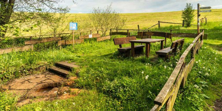 Steffelner Drees © Eifel Tourismus GmbH, D. Ketz