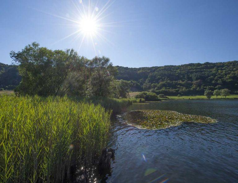 Seen und Weiher